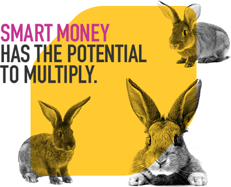 Smart money has the potential to multiply